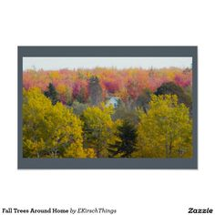 Fall Trees Around Home Poster