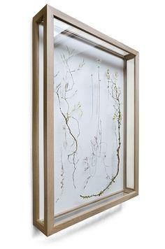 The Fantastic Fragile Fine Art of Anne Ten Donkelaar Flower Artists, Framed Art, Wall Art, Botanical Wallpaper, Acrylic Display Box, Pressed Flower Art, Plant Aesthetic, China Painting, Contemporary Artwork