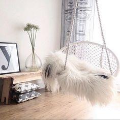 Hangstoel rond van O5 Home (50,-) bij @sevencouches thuis! #loods5 #home #O5Home #hangstoel #regram #stoel #wit