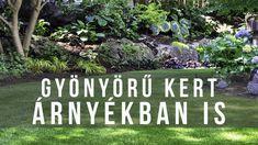 Gyönyörű kert árnyékban / Rossz gyep helyett virágágyás a kert sötét ter... Stepping Stones, Garden, Outdoor Decor, Plants, Youtube, Tv, Stair Risers, Lawn And Garden, Gardens