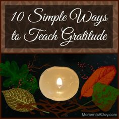 10 Simple Ways to Teach Gratitude.......and so many more great ideas for teaching toddlers how to connect with others, serve, and build character.