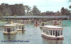 Famous Glass Bottom Boats - Silver Springs, Florida~~~~~~~This was so much fun would love to go back!!!!