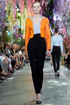 Christian Dior Spring 2014 Ready-to-Wear Fashion Show - Julia Nobis (Viva)