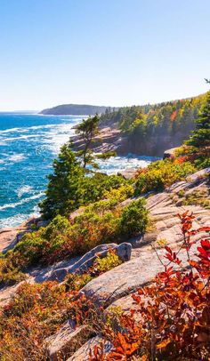 When you think of National Parks, you usually think of untamed wilderness as far as the eye can see. but that's not exactly the case with Maine's Acadia Nation Best Places To Camp, Oh The Places You'll Go, Places To Travel, Travel Destinations, Acadia National Park Camping, Grand Canyon Camping, Maine Road Trip, Travel Usa, Travel Maine