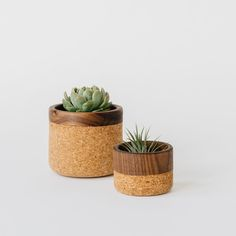 """These cork bowls with American Walnut Trims are hand-turned in Oakland, CA. Cork is a naturally antimicrobial and hypo-allergenic, making it an ideal material for food and plants. Each bowl has a hand sanded interior and is finished with a natural beeswax. Perfect as a planter or catch-all bowl. Small: 3.5"""" dia x 2.5"""" hLarge: 4.5"""" dia x 4"""" hCork is a 100% sustainable material produced from the cork oak bark."""