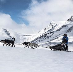The 2017 Fjällräven Polar is on! Follow the adventure daily at polar. #adventure #fjallraven