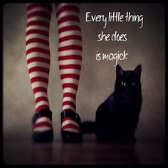 Magick is afoot when the witches cat is about… Black Cat 黒猫 Crazy Cat Lady, Crazy Cats, Chat Halloween, Halloween Pictures, Animal Gato, Image Chat, Here Kitty Kitty, I Love Cats, Magick