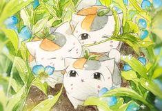 夏目友人帳 Natsume's Book of Friends Anime Chibi, Kawaii Anime, Manga Anime, Anime Art, Anime Love, Anime Guys, Natsume Takashi, Hotarubi No Mori, Japanese Artwork