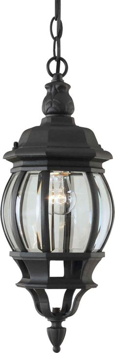 Forte Lighting 1702-01 Traditional / Classic Outdoor Pendant from the Exterior Lighting Collection, 18 in, $50
