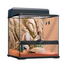 Exo-Terra Desert Reptile Glass Terrarium Kit