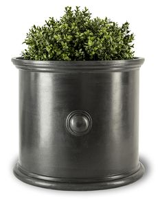 Trafalgar (L) in Planters   Buy Online at Capital Garden Products