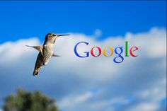 Excellent Article on How To SEO with Google Hummingbird | Computer Repair Miami Affordable Flat Rates, Laptop Repair Miami