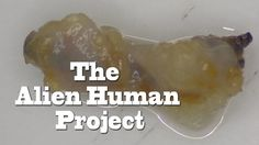 "UFO Sightings ""Alien Human Project"" Full Length Documentary! FUll DISCLO..."
