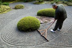 A rock garden is raked daily to allow the zen to flow