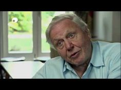 Sir David Attenborough - Plastic Oceans A simple truth, that may prove too hard to swallow for those who make plastic David Attenborough, Economic Systems, Revolution, Hard Truth, Oceans, Mother Earth, Techno, Documentaries, Environment