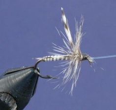 fly tying | home)/ Fly-Tying/ Henry-Wombacher