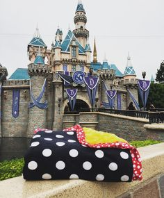 Our happiest blanket at the Happiest Place on Earth ❤️ #minkycouture #disneyland #blanket #bestblanketever