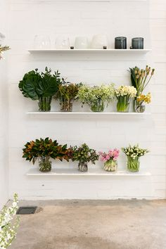 BLUSH - The purdiest interior design for a modern NZ florist: