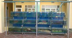 Dàn bể hải sản chuyên nghiệp nhà hàng Như Ý - TP Ninh Bình