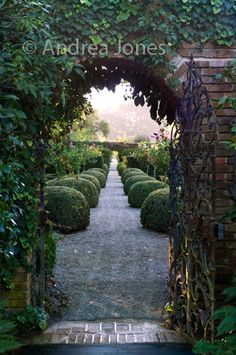 Looking through a gateway from the Walled Garden to the Yew Allee and Rose Garden at Filoli, Woodside, California