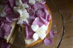 Vanilla and rhubarb cake topped with sugared rose and philadelphus flowers.