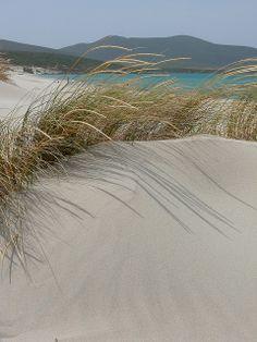 Porto Pino dunes - Sardinia. Dune di Porto Pino in Sardegna