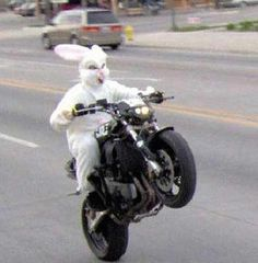 Now that's one bad-ass Easter Bunny. Like.