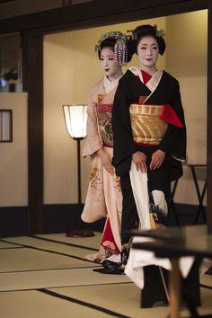 Geiko and maiko, tea ceremony