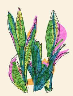 """Sanseviera"" by Marina Gerosa on #INPRNT - #illustration #print #poster #art #plant #plants #sanseviera #green #nature #bright #colors #happy #fresh #pop"