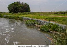 Image result for wire mesh with rocks for walls river