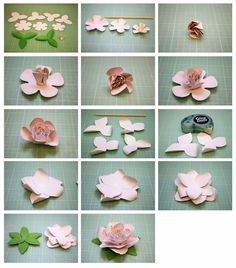 Begonia and Gardenia 3D Paper Flowers