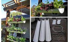DIY Gutter Hanging Garden