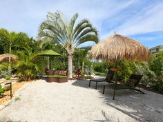 Backyard Beach, Plush Couch, Hammock