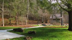 Lush green grass hugs the ADA walkway  leading to restroom at Frank Gross campground