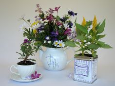 Tea cups, teapots, and tea tins make beautiful vases and planters using the Rule of Three!  More information at Cozy Comments  http://www.koffeekompanions.com/Blog/?p=1483