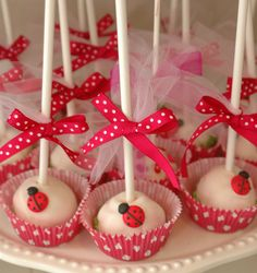 Ladybugs on cake pops. Ladybug Cake Pops, Ladybug Cakes, Ladybug 1st Birthdays, First Birthdays, Miraculous Ladybug Party, Ladybug Picnic, Spring Cake, Cute Cakes, Birthday Parties