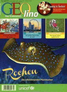 Rochen - Die schwimmenden Pfannkuchen. Gefunden in: Geolino, Nr. 4/2015