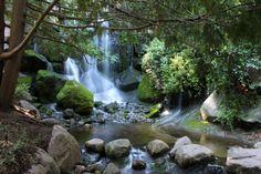 Mystic Waterfalls by NatureShotsbyAnn on Etsy, $16.00