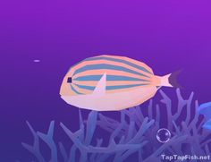 Tap Tap Fish Light Jellyfish Adorable Basking Shark  Abyssrium Tap Tap Fish  Fish  Pinterest  Basking Inspiration Design
