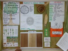 O stromech School Projects, Bullet Journal, Class Projects
