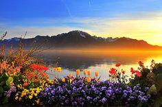 Switzerland. Taken by Adel Alelati. #Scenery #Photography #Colors #Beauty
