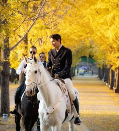 Lee Min Ho Looks Princely Riding a Horse Through Autumnal Trees in First Still from K-drama The King: Eternal Sovereign Choi Min Ho, Lee Min Ho Kdrama, Kim Seol Hyun, My Fair Lady, Boys Over Flowers, Entertainment Weekly, Korean Celebrities, Korean Actors, Korean Dramas
