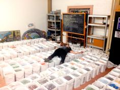 Smalti Overdose at The Chicago Mosaic School. CMS acquired over 13.000 pounds of vintage smalti leftover from 80 years of work at the Saint Louis Basilica Cathedral. No CMS student will ache for smalti again!!!