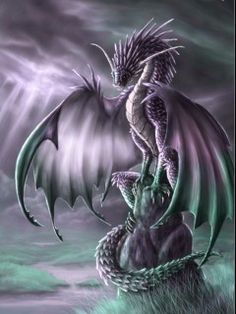 Google Image Result for http://images2.fanpop.com/images/photos/7000000/Dragons-dragons-7052062-240-320.jpg
