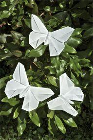 A Butterfly for V'Ann Cornelius