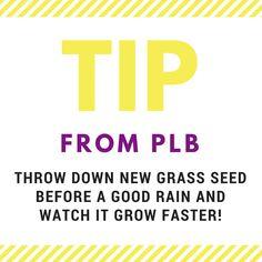 DIY tips from plbonline.com