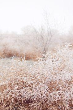 Dernières lueurs d'hiver » Cachemire et soie - Blog photo, Paris, mode, style, voyage