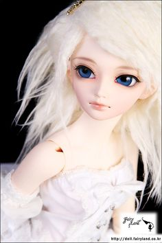 This is the MIni Fee Shushu pic from the site, but I've seen much prettier ones.