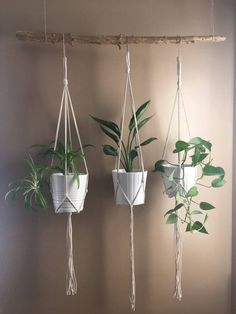 Minimalist Macrame Plant Hanger//Modern Macrame//Macrame Plant Holder DIY Hanging Plant Holder indoor and outdoor . Hanging Planters, Planter Pots, Hanging Herb Gardens, Hanging Plant Diy, Diy Hanging Planter Macrame, Indoor Plant Hangers, Hanging Flower Pots, Macrame Plant Holder, Macrame Plant Hangers