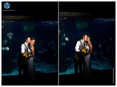 Virginia Aquarium Wedding | First Look | Nighttime Wedding | Fish Tank | Daissy Torres Photography